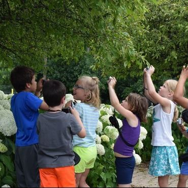 Children holding up cameras to photograph plants and flowers